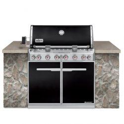 Weber® Summit® E-660 Built In